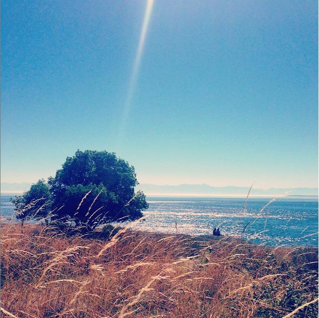 San Juan Island, WA | Septmember 2014