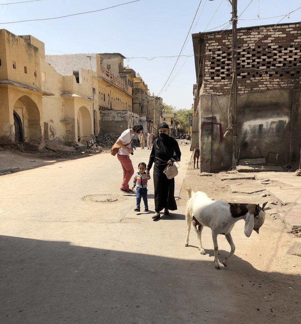 Wandering in Jaipur