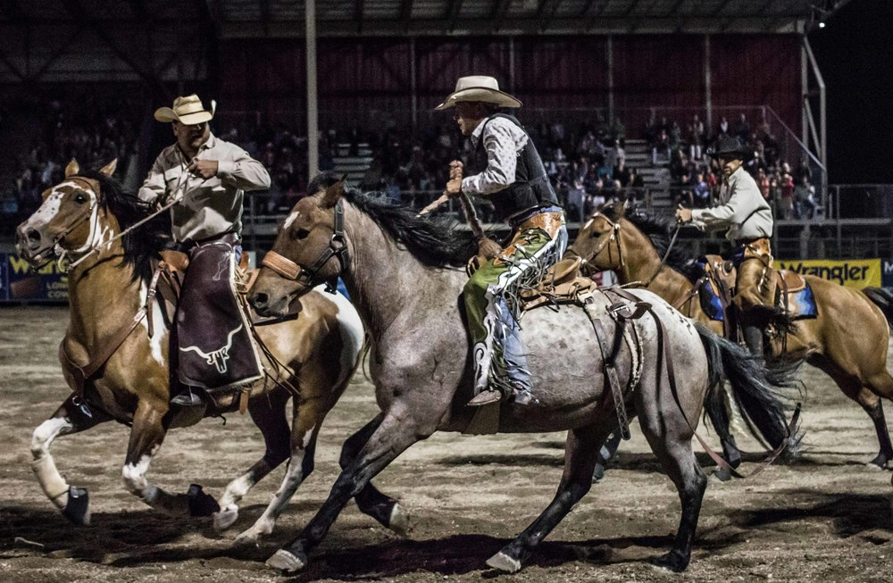 48_rodeo.jpg