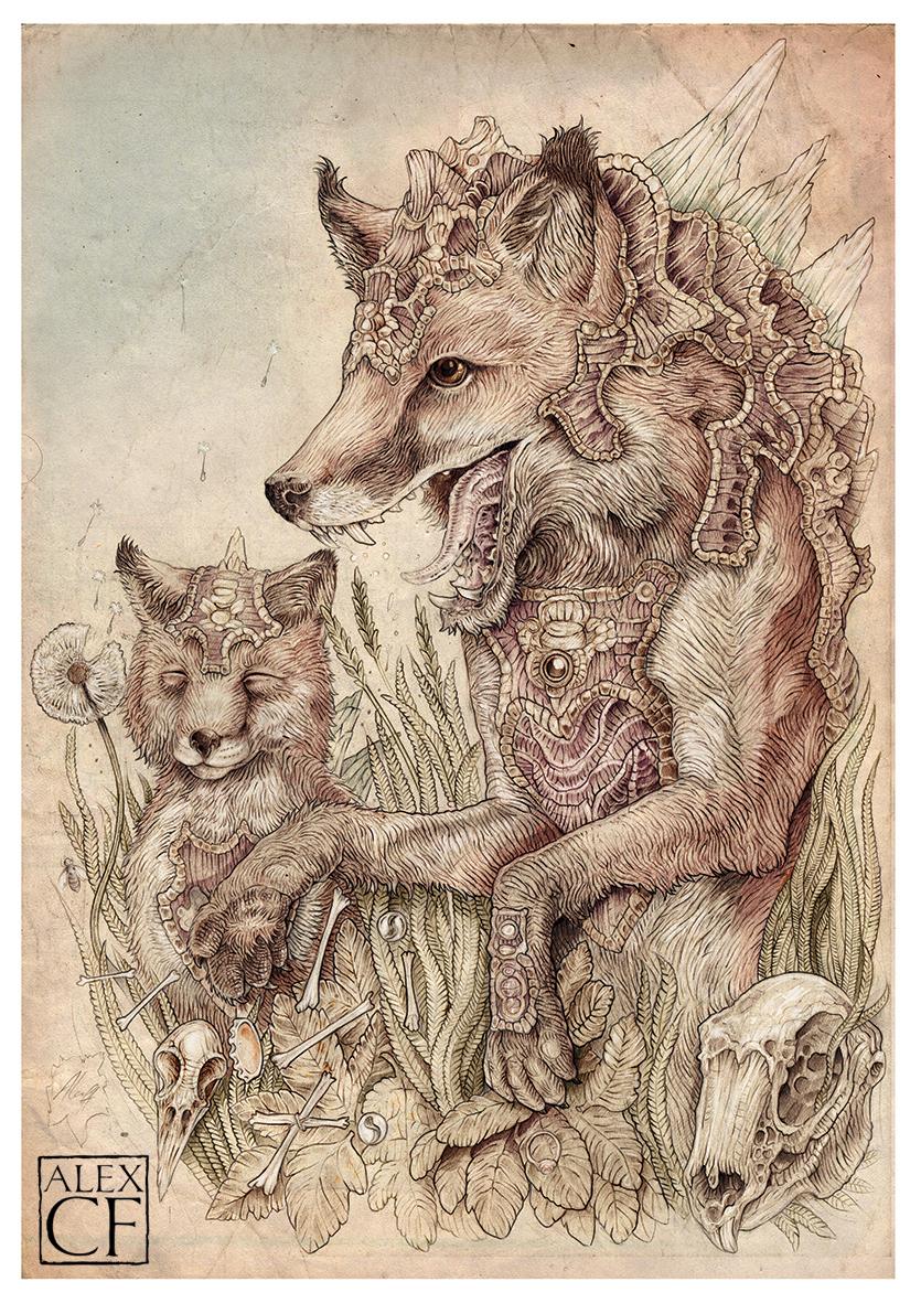 fox small.jpg