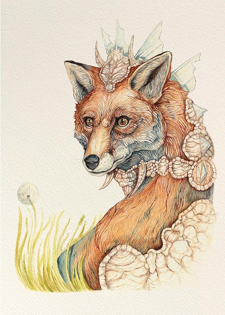 fox+small.jpg