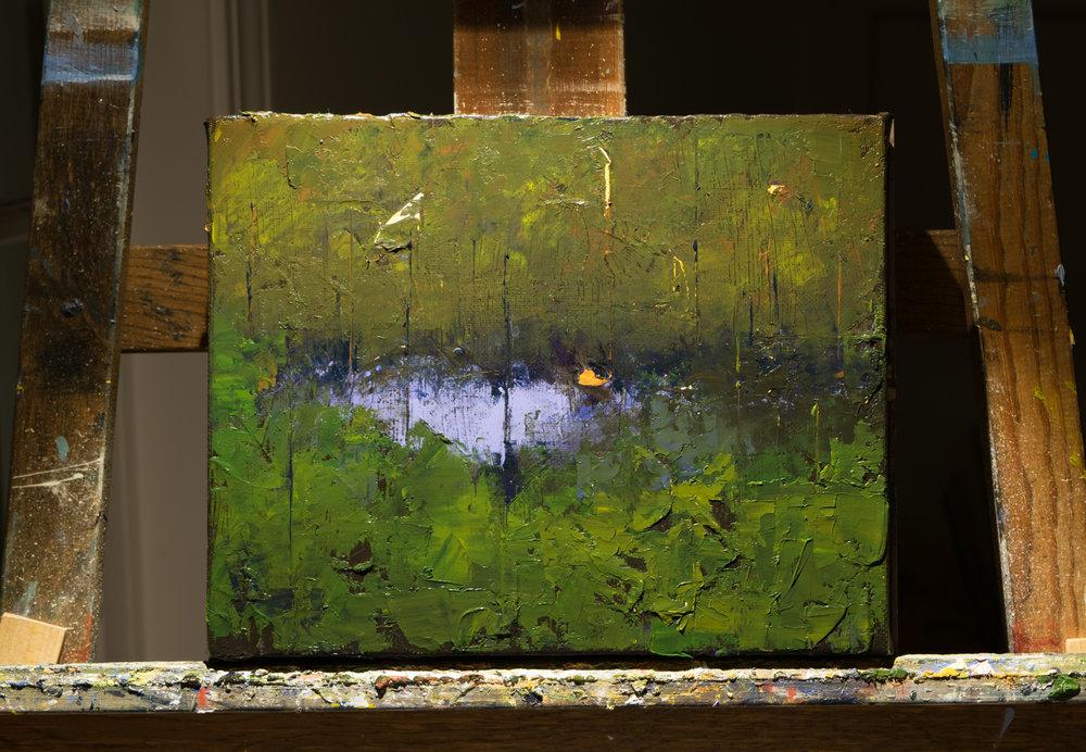 the wood pond.jpg