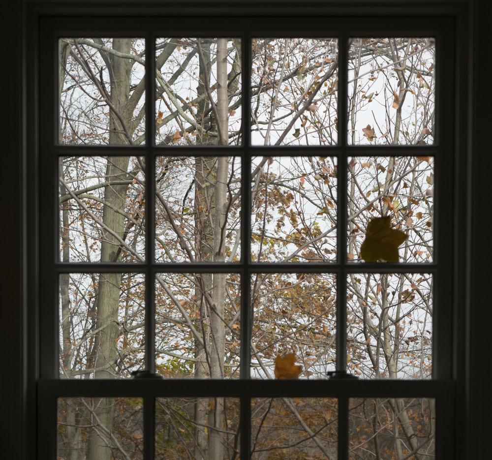 looking east in autumn-4.jpg