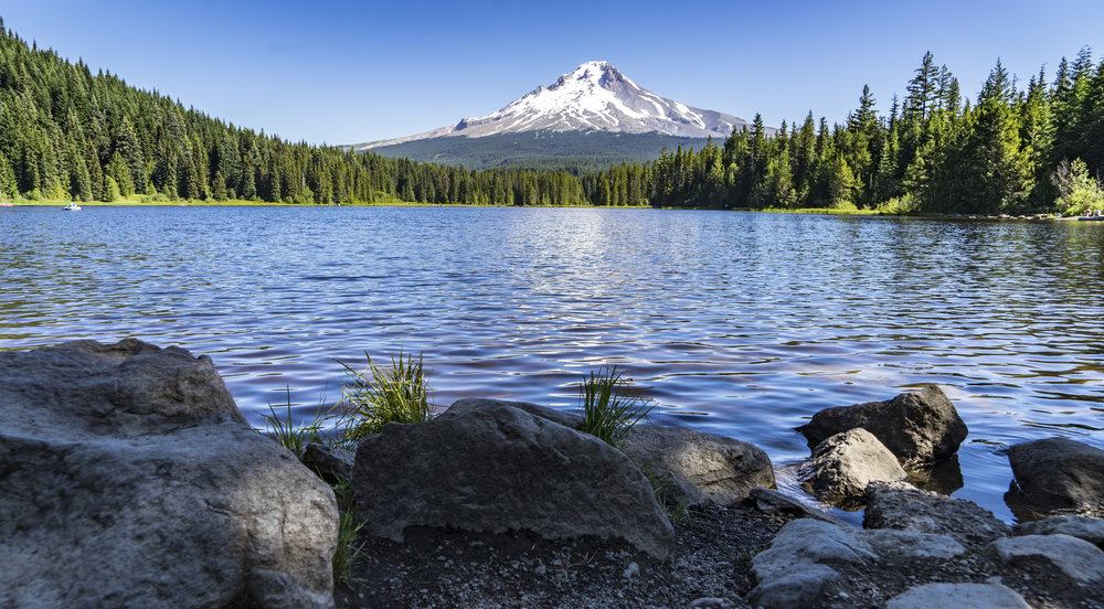 Mount hood from Trillium Lake...post beer-a-thon in Bend