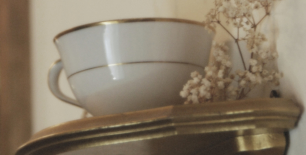 dantycupwall.banner.f.JPG