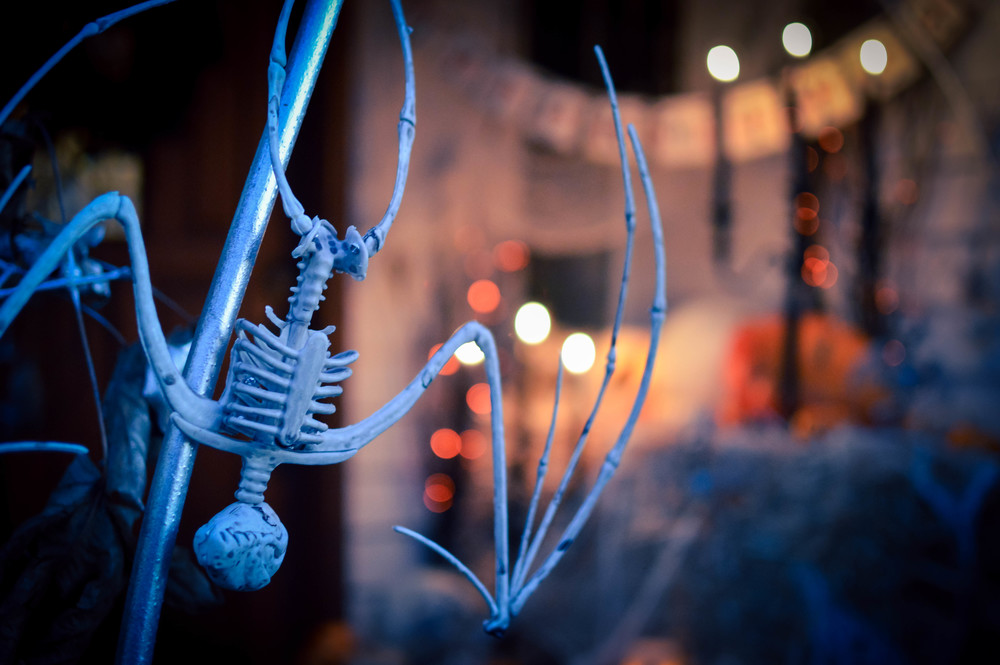 World Market Halloween Decor-14.jpg