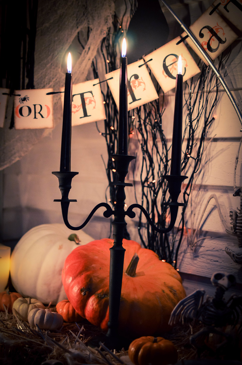 World Market Halloween Decor-51.jpg