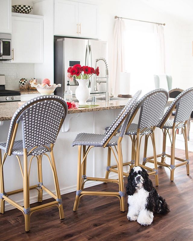 🌺 Happy Saturday!! I hope you have something fun planned for your weekend! I recently updated the counter stools in our kitchen to these @safavieh Gresley French Bistro chairs and we are all in love. They are so easy to keep clean and add so much style to the kitchen. They are also indoor or outdoor☀️! I've linked a few different options for you on my @liketoknow.it page (click the link in my bio!) #liketkit http://liketk.it/2AF3O #lookslikesomeonesdecorating #safavieh #safaviehpartner #mackenziechilds #springdecor