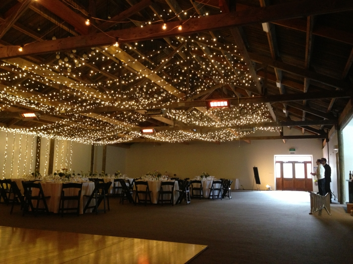 Fairy Lights at Larcomb Vineyard