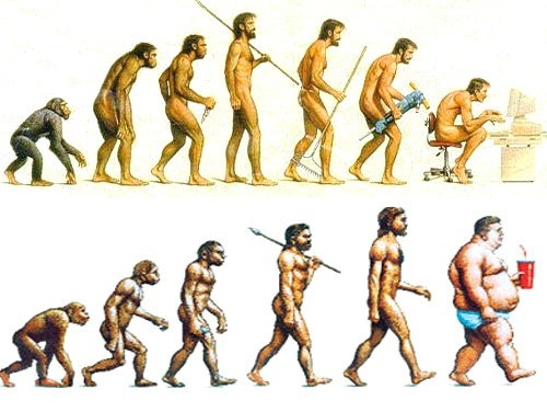 Image result for images human evolution fast food