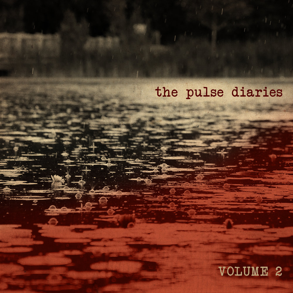 The Pulse Diaries volume 2 - (Released December 4, 2017)1. aggressive catharsis2. alogia3. when our memories were stolen from your mind4. staring off into nothingness