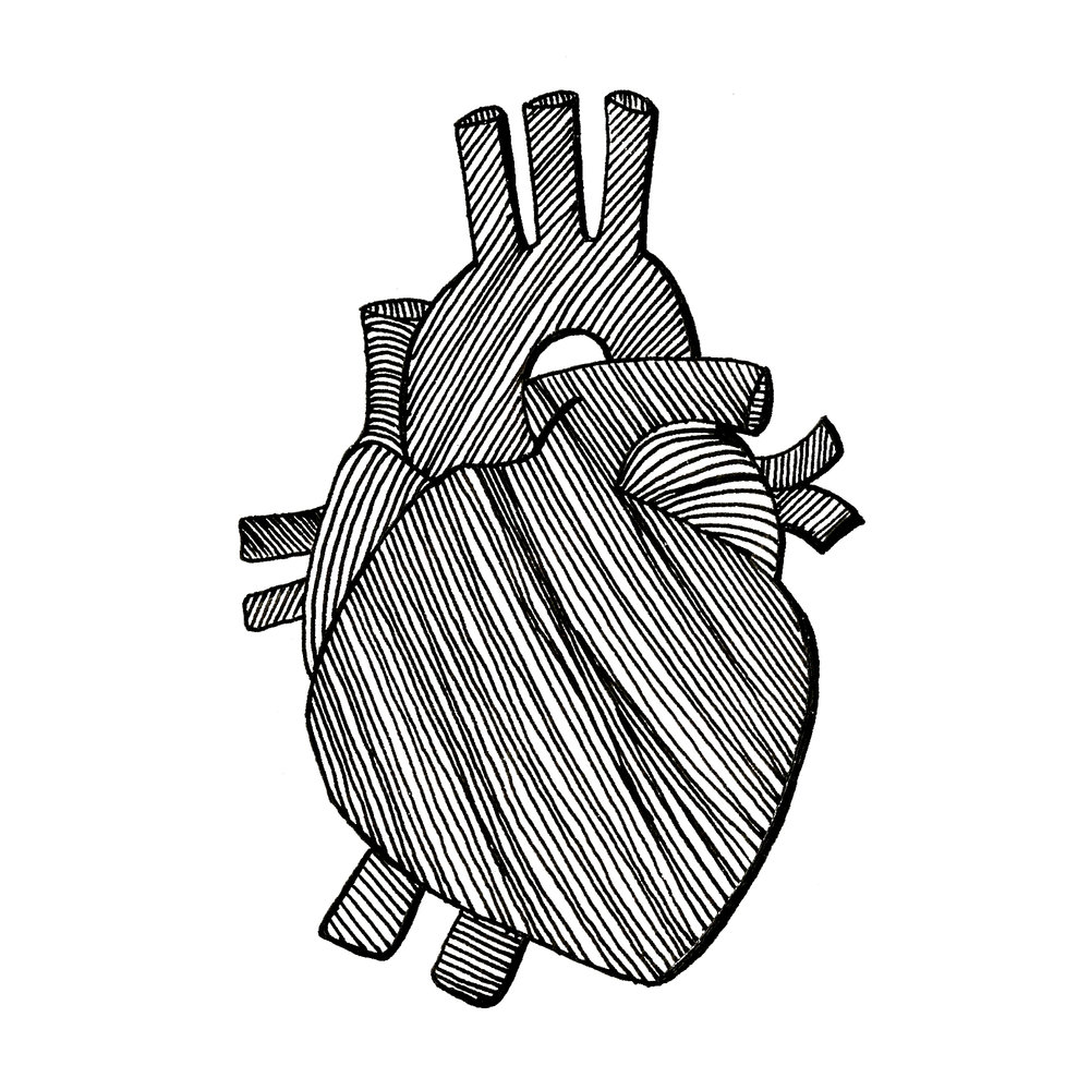 Heart_Illustrations_2000x2000.jpg