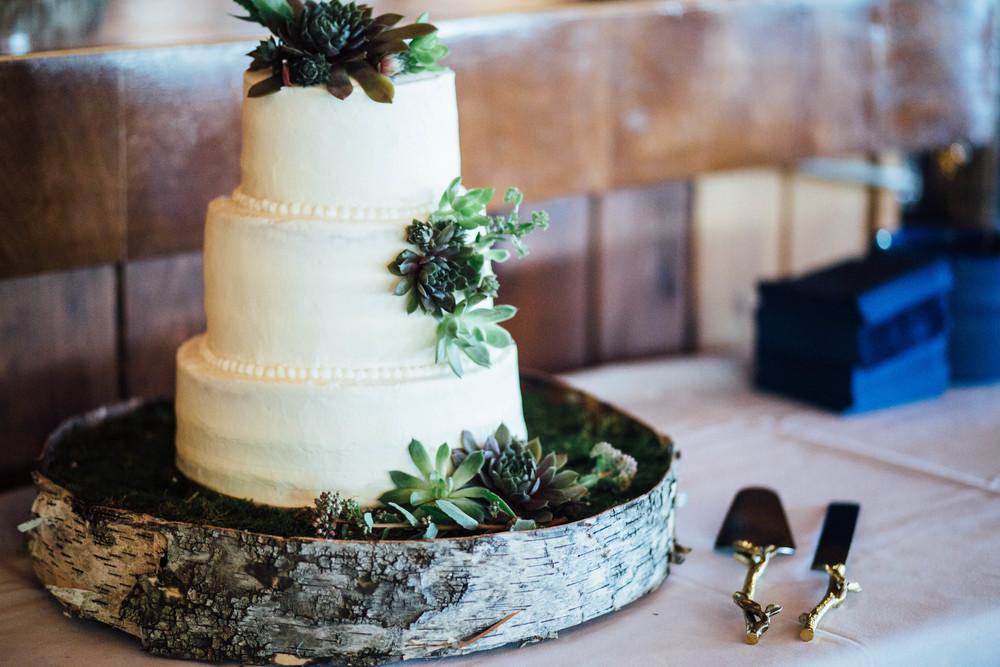 michigan-wedding-rachel-jim.102.jpg