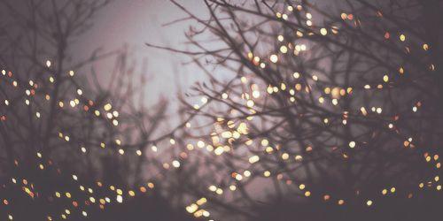 twinklelights.jpg