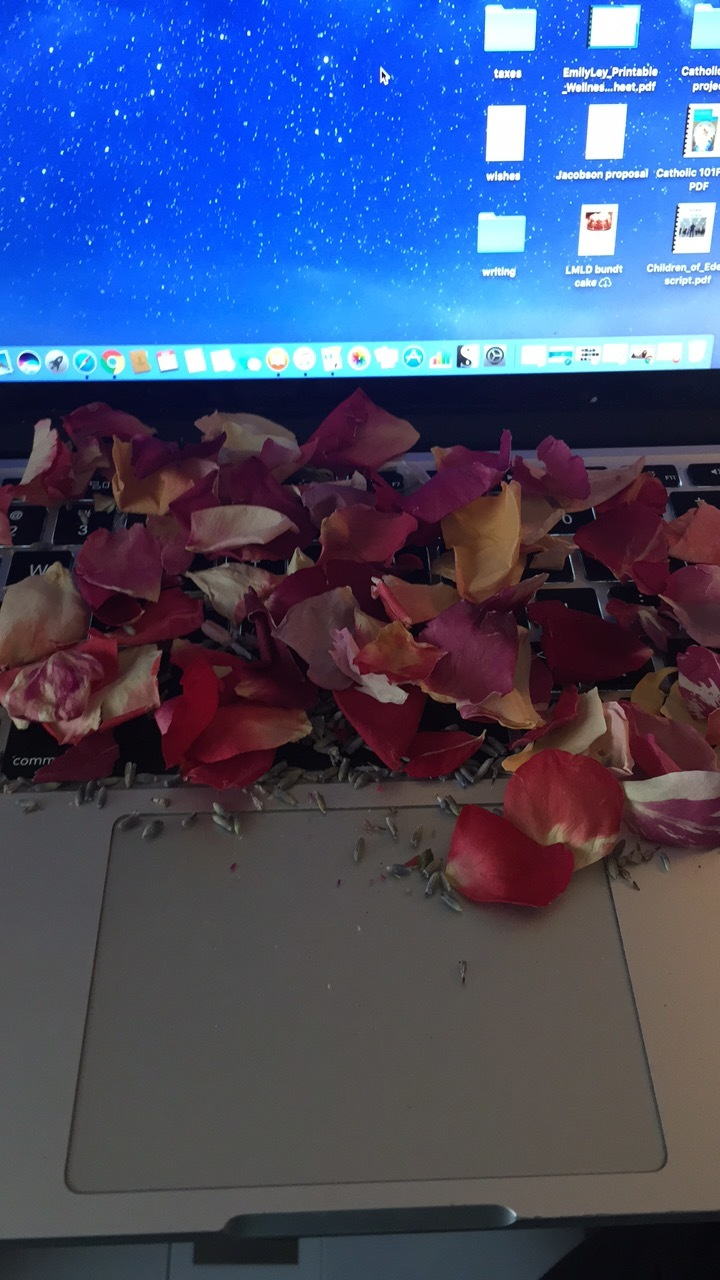 My computer after the confetti pop. It was special confetti and I LOVE IT.