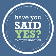 save lives be an organ and tissue donor emily m deardo