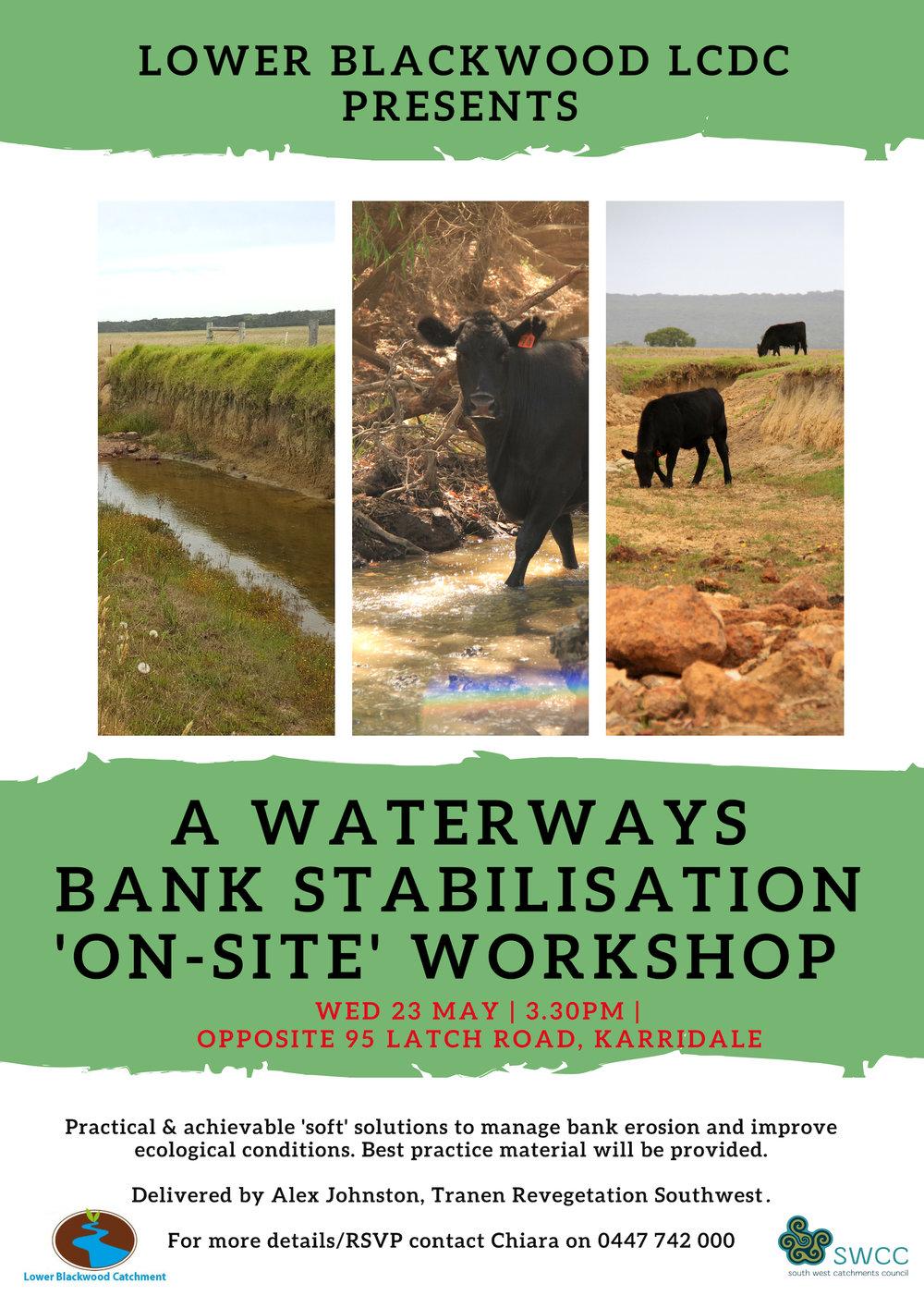 WATERWAY RESTORATION WORKSHOP_ BANKS STABILISATION.jpg