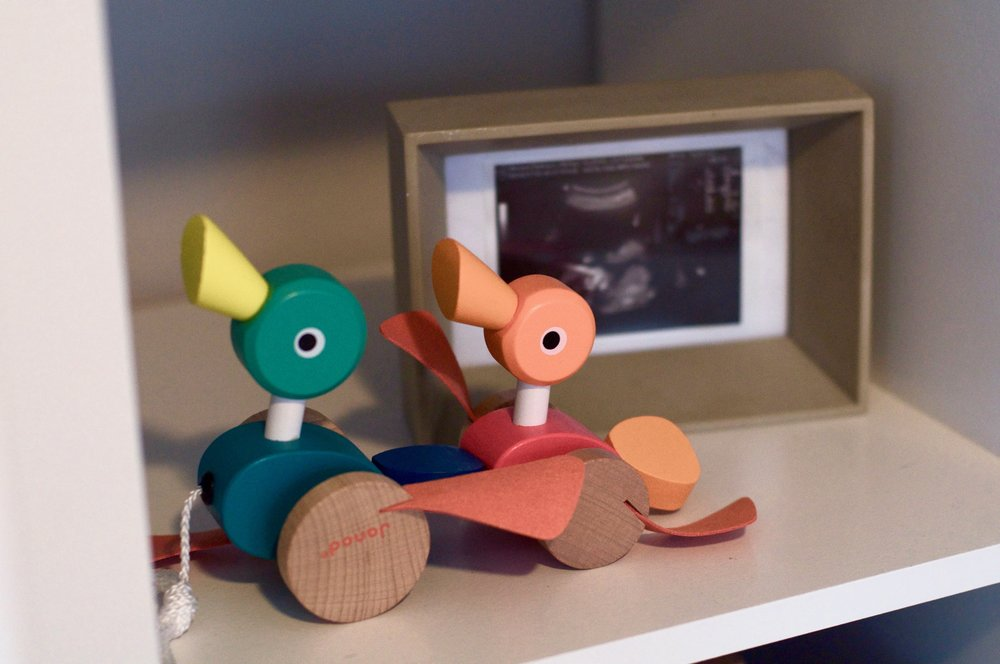 shelving  |  ducks pull toy  | frame (old HomeGoods find)