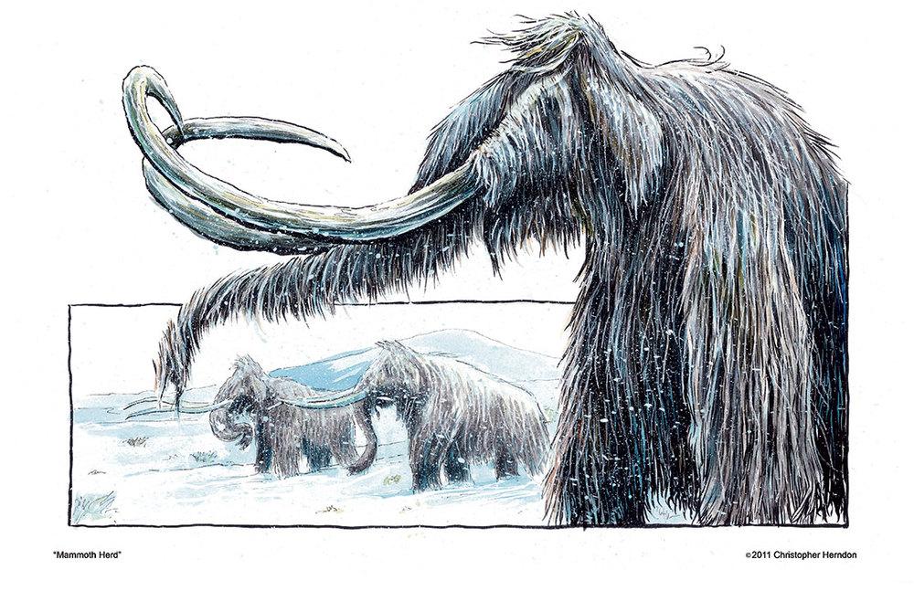 2011mammothprint01.jpg