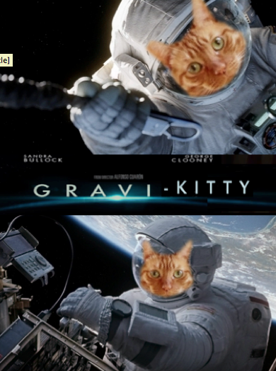 GRAVI-KITTY.png