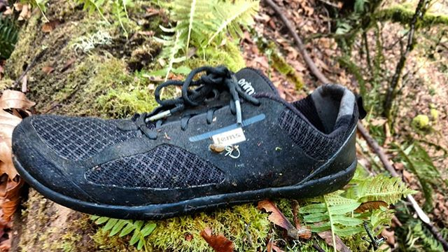 Lems minimalist shoe in its natural habitat. Oh and I picked up a hitchhiker!  #naturalmovement #movelikeahuman #minimalistshoes #barefootlife #lemsshoes #strongfeet #barefootstrong #natureschool #pnw