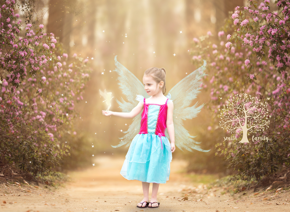 Fairy Imagination Session