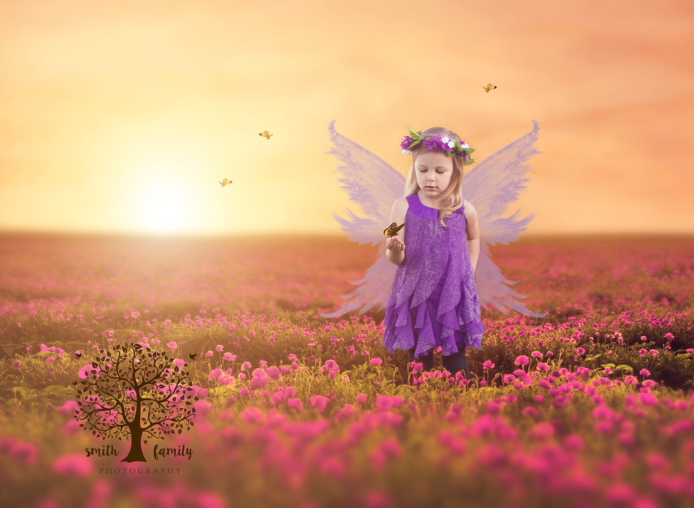 Fairy Imagination Session with Butterflies