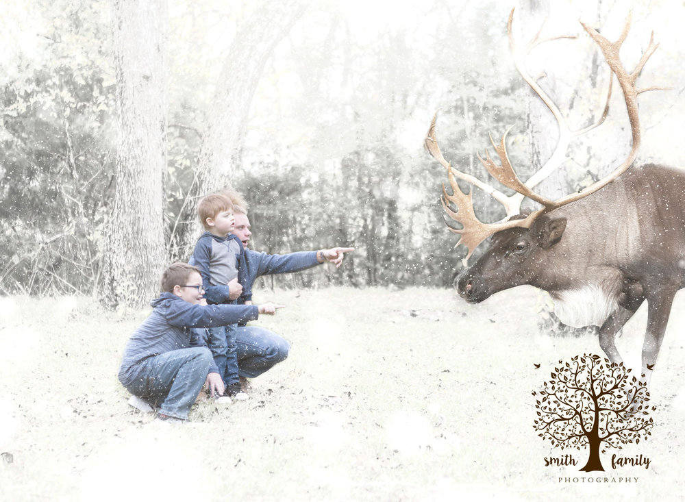 reindeer_winter_wonderland_smith_family_photography