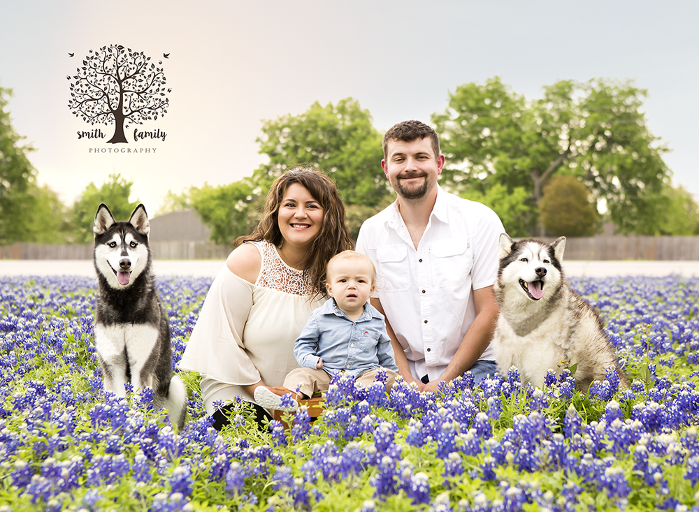 Loewen Family at the abundant bluebonnet field at Spring Valley Elementary in Hewitt, Texas.