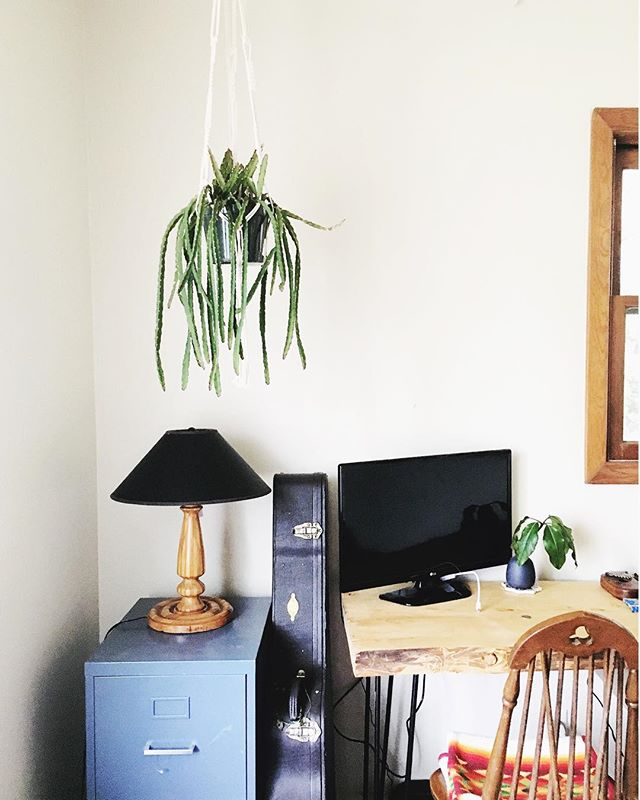 I miss home. I miss my cactus and little magical music/office space.