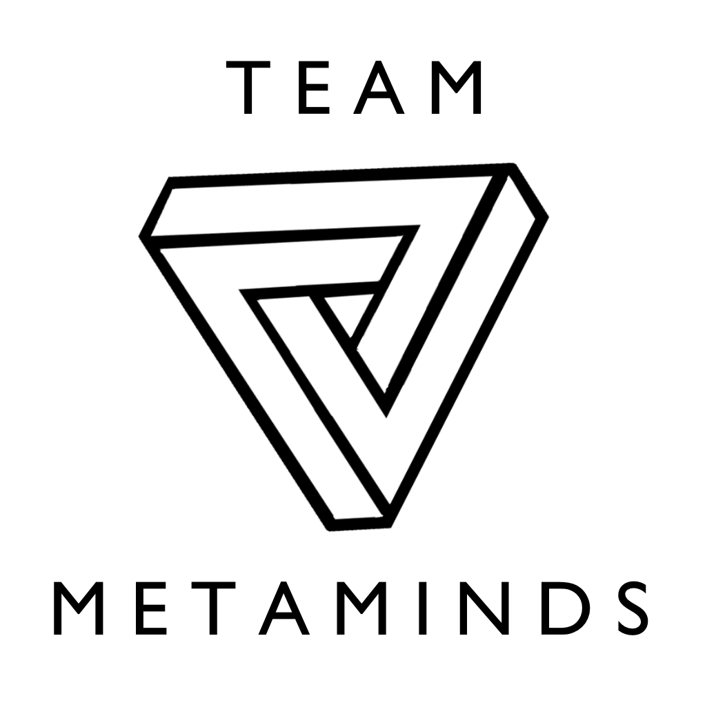Team Metaminds