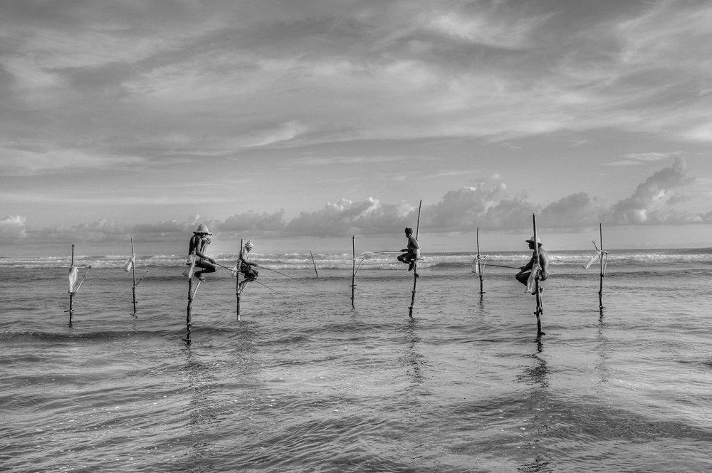 《高跷捕鱼》斯里兰卡 Sri Lanka