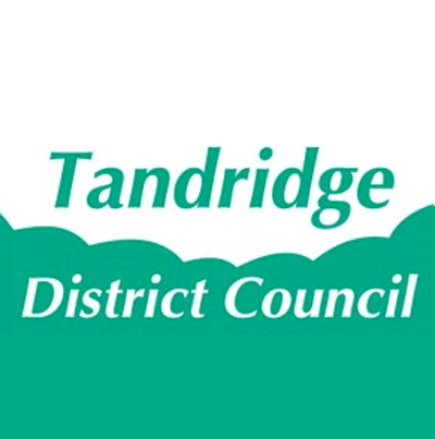 Stuart Mitchenall, Tandridge district council