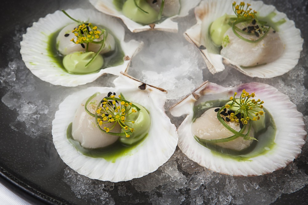 Scallops_DillFlowers.jpg