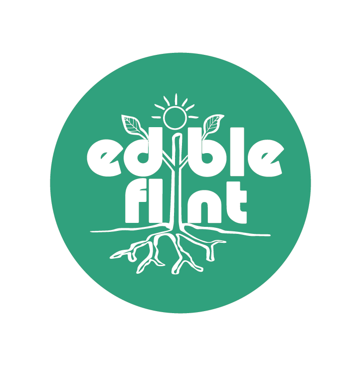 Edible_Flint_Logo.png