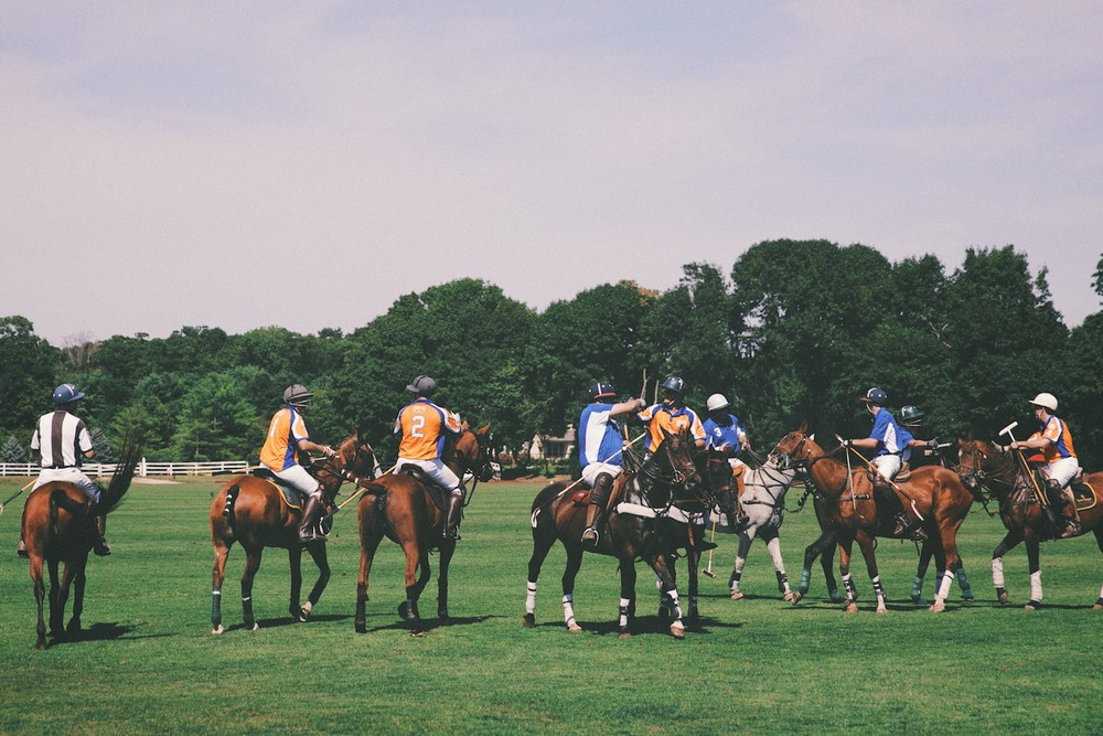 Oh wait,  there was  an actual polo match going on.