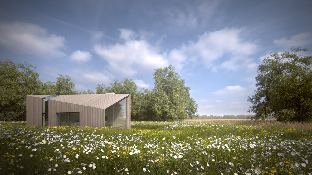 New Build Green Belt House - Wildflower Meadow