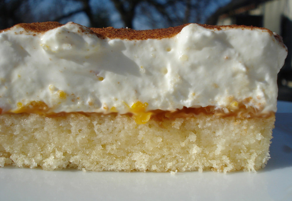 Apfel-Vanille-Schnitte.jpg