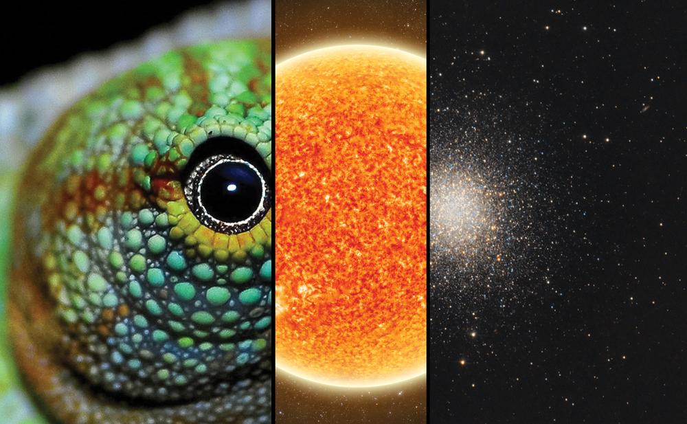 Waterberg_Observatory_0_Brand.jpg