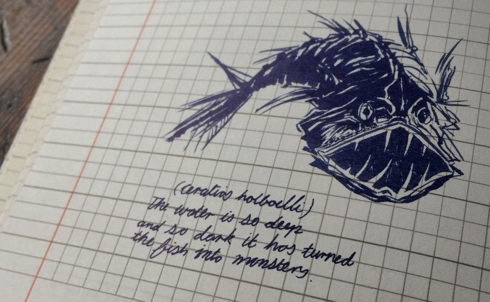 AntalisJournal7.jpg