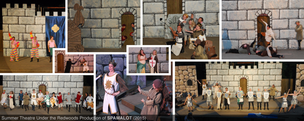 tim_homepage_spamalotpics.png