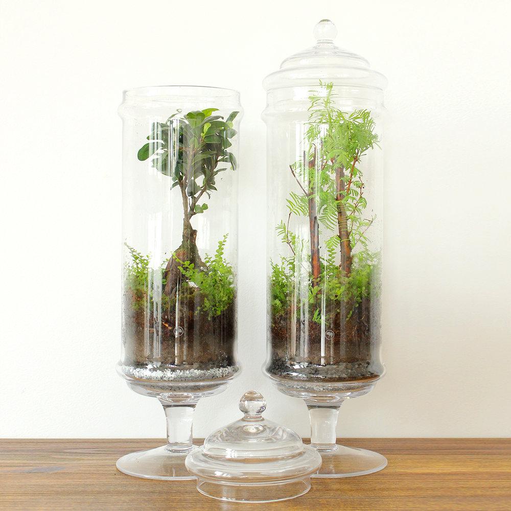 Jar Collection [50cm x 13cm] – 150€