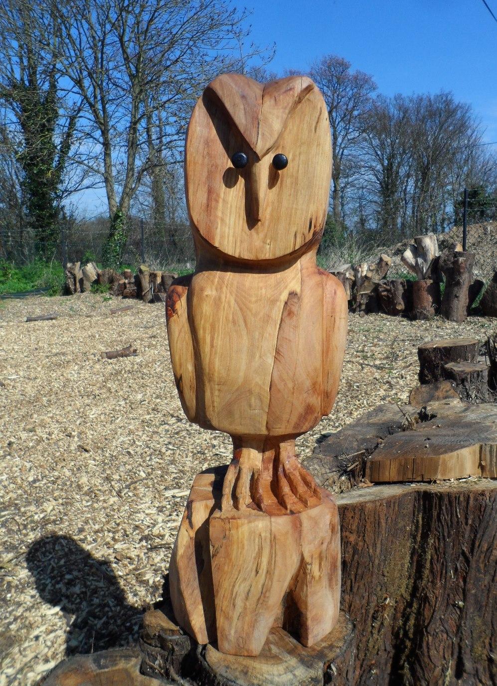 033 20130424 Barn Owl Smll (2).JPG