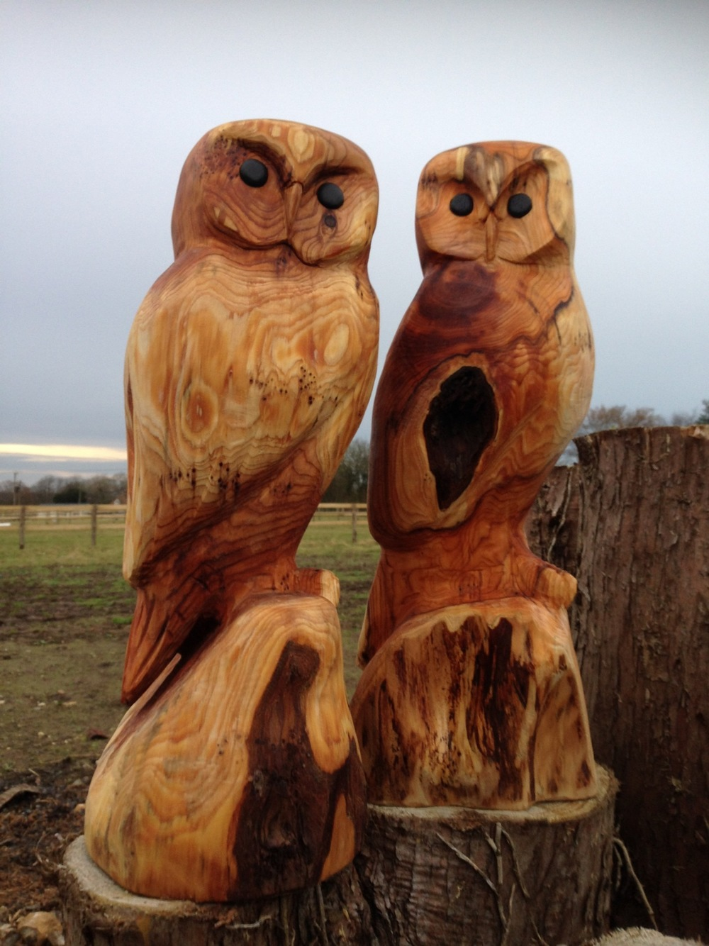 Owl material spruce chainsaw wood carving owl chainsaw