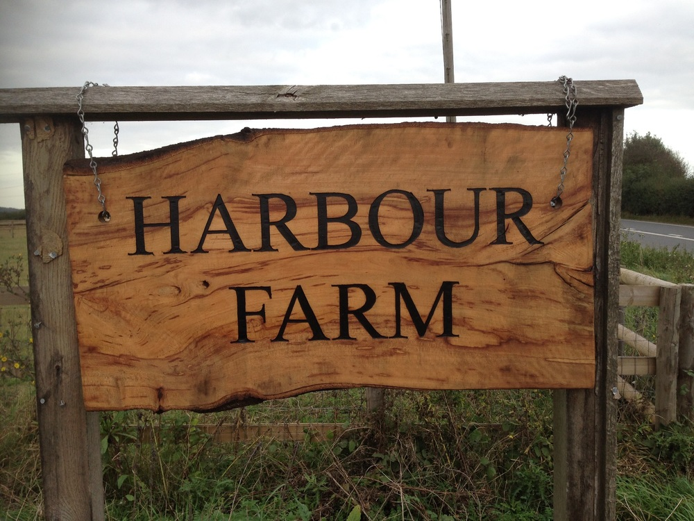 20140110 Harbour Farm.JPG