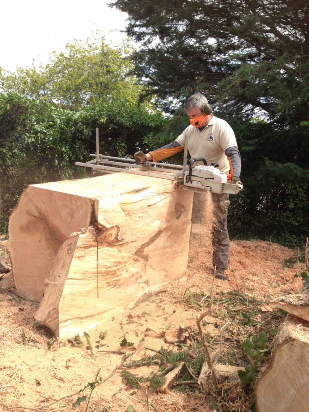 Les langley chainsaw carver carving milling