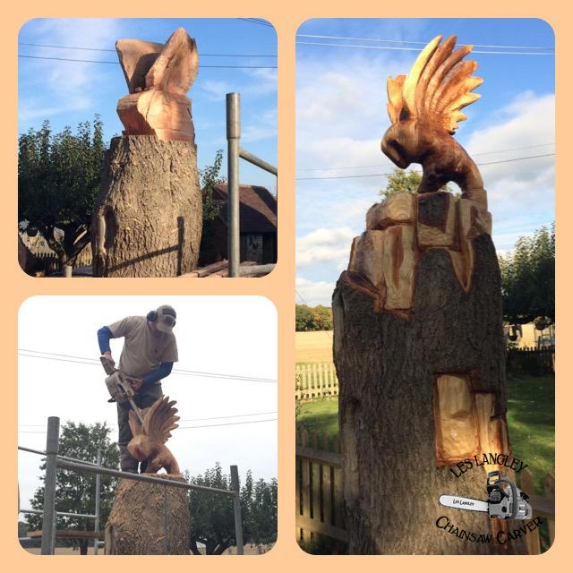20161024 Owl on Ash Tree (2).JPG