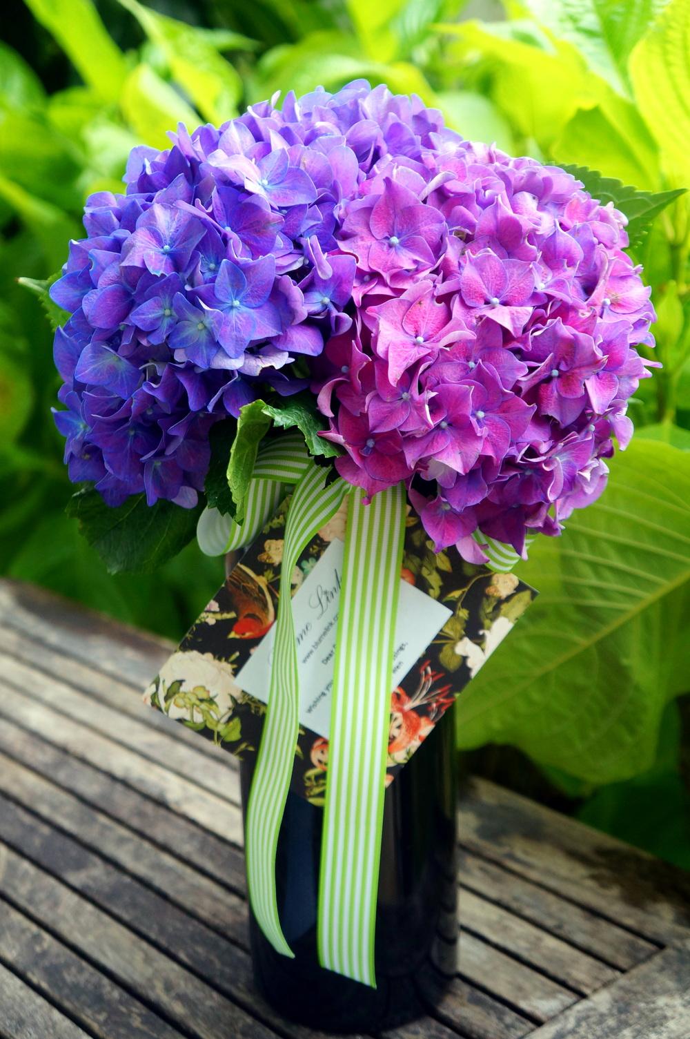 Purple Splendour 1.jpg