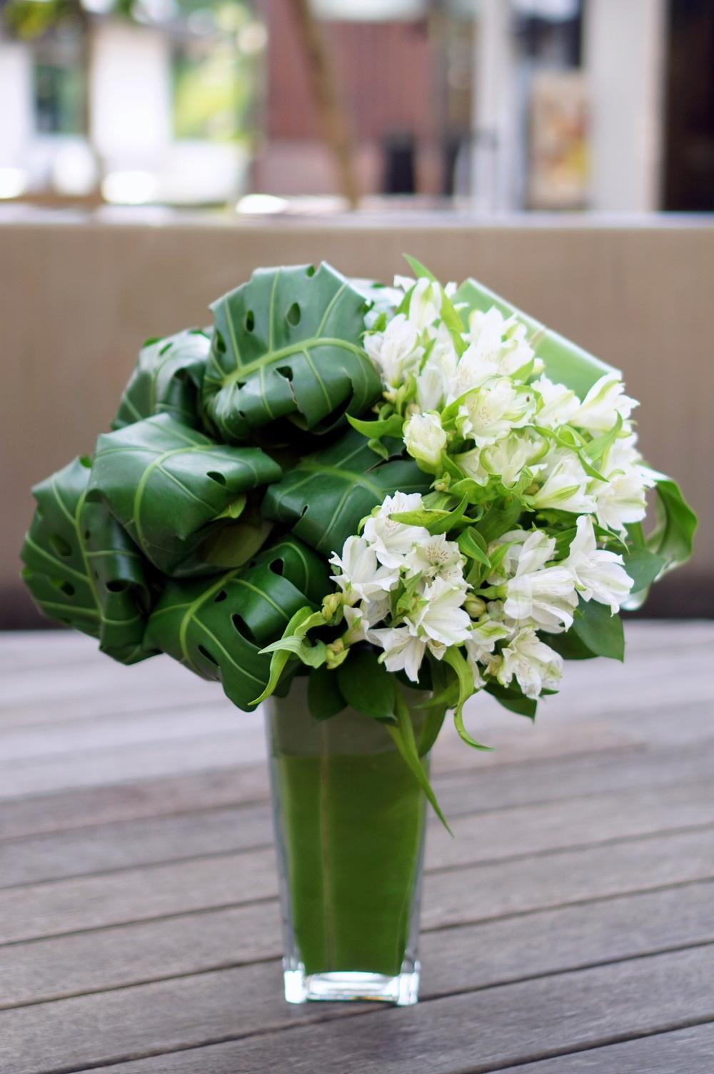 White & Green 2.JPG