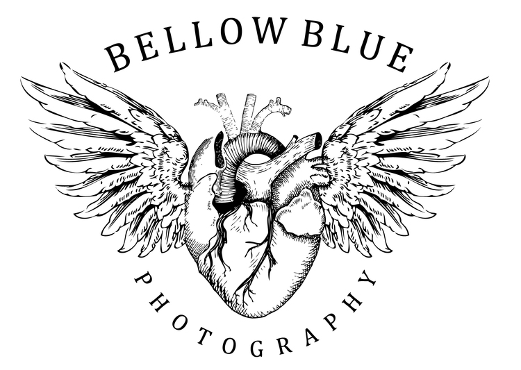 BellowBlue